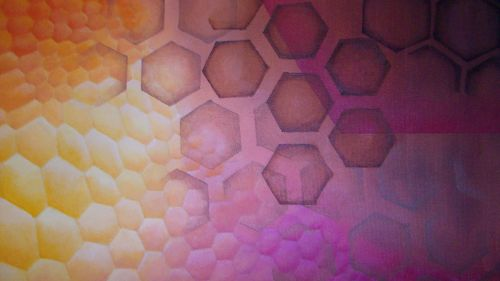 Honeycomb Close Up 1 By Delphivalentine